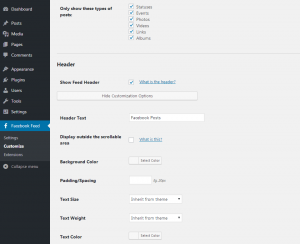 Customizing your Facebook feed WordPress plugin - General Settings 2