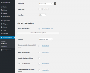 Customizing your Facebook feed WordPress plugin - General Settings 3