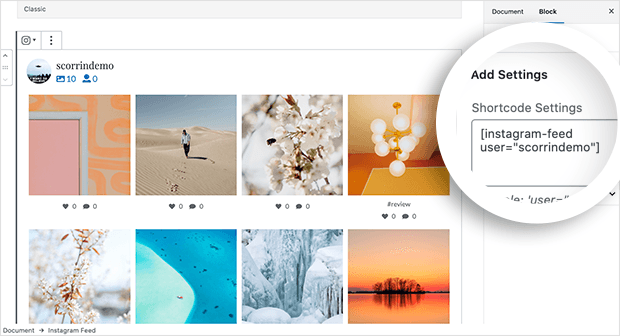 Display a different Instagram user feed
