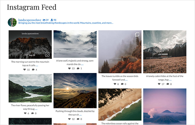 embedded instagram feed on wordpress example