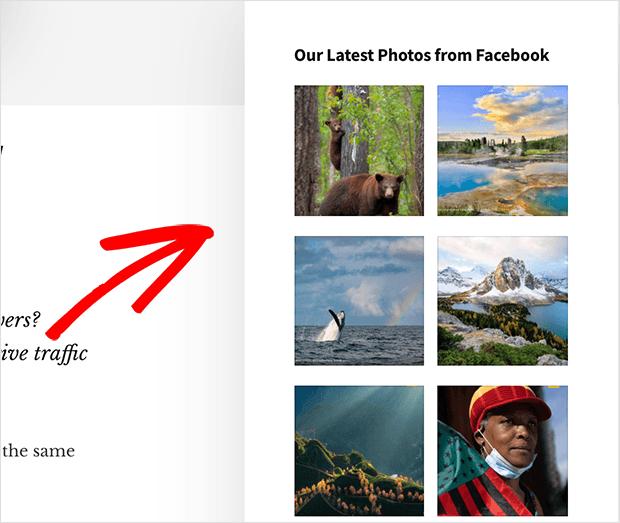 Facebook photo albums in the WordPress sidebar