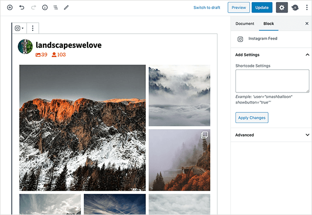 preview instagram widget on wordpress