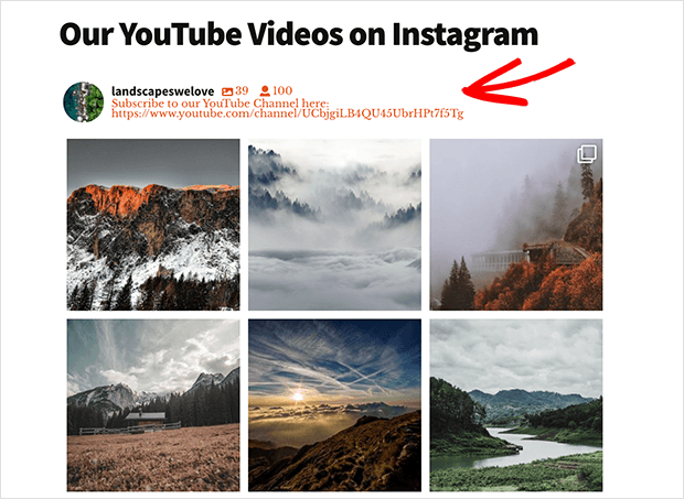 show your instagram bio in your website feed