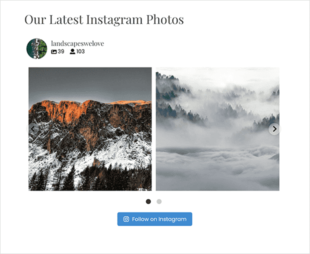 horizontal instagram feed with navigation and 2 photos