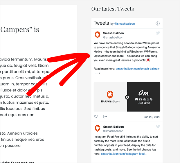 Example of adding your twitter feed to a sidebar area without using a plugin