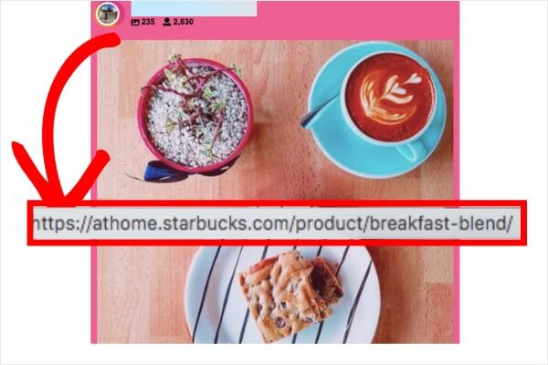 shoppable instagram feed on website
