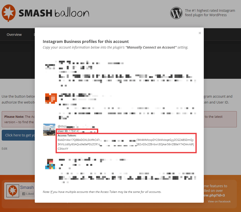 Smash Balloon site popup, save User ID and Access Token for relevant Instagram account
