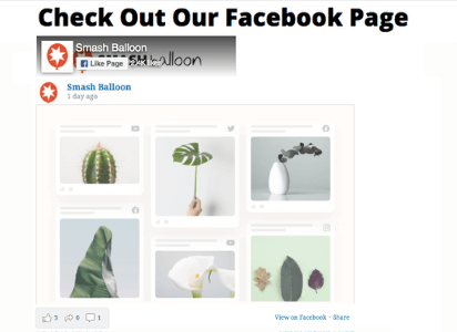 preview of custom facebook feed pro plugin for wordpress