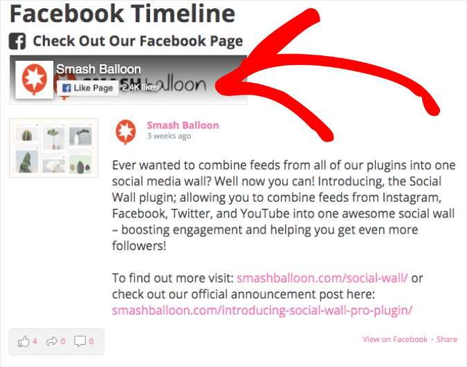 facebook timeline on website example with header