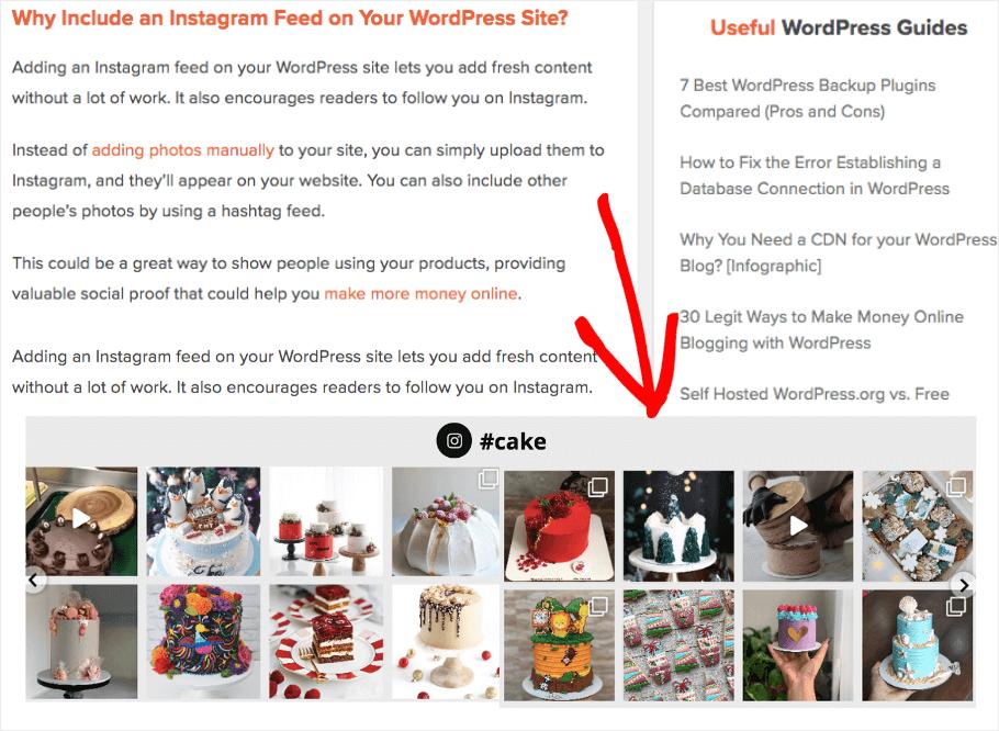 instagram feed on website examples footer widget