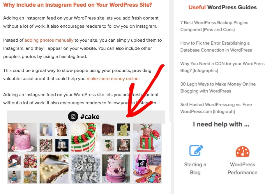 Instagram Footer Widget on WordPress highlight