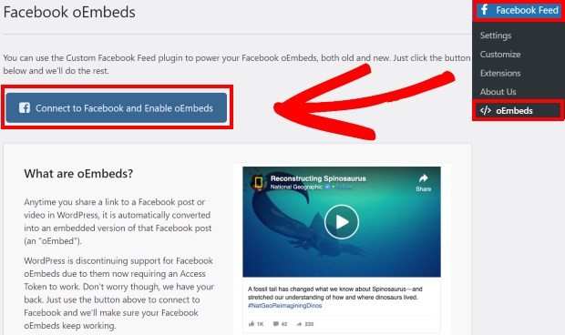 facebook enable oembeds easy