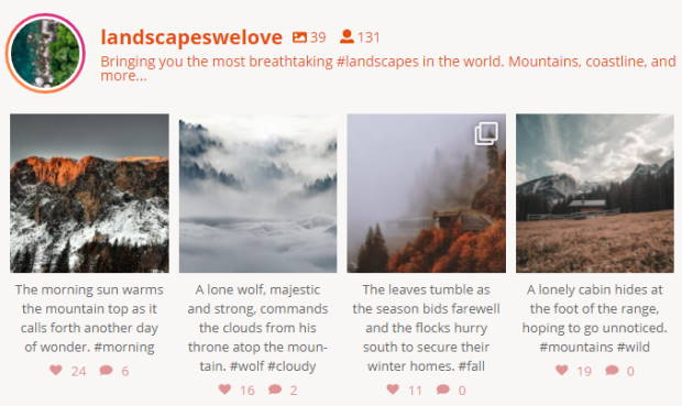 live instagram feed example