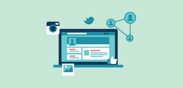 social feed on website